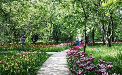 23 и 24 мая Ботанический сад
