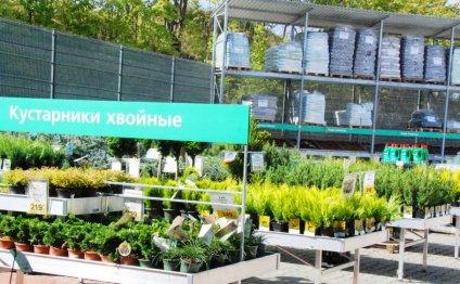 отдел для сада и огорода