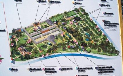 Схема ботанического сада Спб