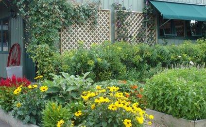 Дизайн огорода своими руками