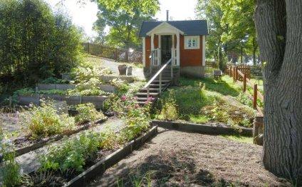 Красивый огород на даче и